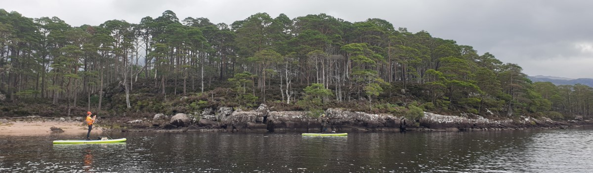 Red SUP paddling on Loch Maree 1 1200×350